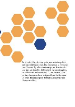 page 4 (conte)